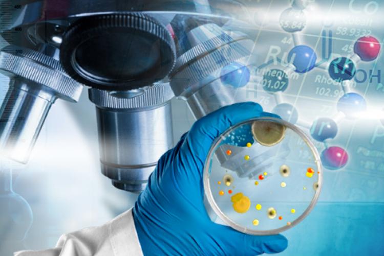 Katedra Biochemii i Biotechnologii